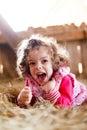 Joyful Girl in Hay Laughing Royalty Free Stock Photo
