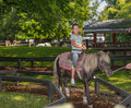 joyful little girl riding on pony horse in Ontario center island park, on summer sunny gorgeous day Royalty Free Stock Photo