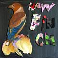 Joyous child s world mixed media bird hawfinch an hand painted illustration and alphabet and blackboard illustration blackboard is Royalty Free Stock Photos