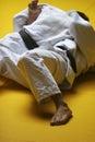 Judo fighters Stock Photo