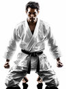 Judoka fighter man silhouette one in on white background Royalty Free Stock Image