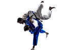 Judokas fighters fighting men silhouette two in on white background Stock Images