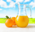Jug of orange juice on nature background half full pitcher Royalty Free Stock Photography