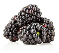 Juicy bramble berry isolated on the white background Stock Photos