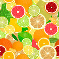 Juicy Citrus fruits set. Bright and vivid. Yellow, orange, red, green. Whole and slices