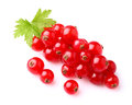Juicy currant with leaf Royalty Free Stock Photo