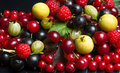 Juicy fruits and berries summer Royalty Free Stock Photography