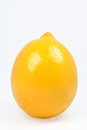 Juicy and glistening lemon on a white background Royalty Free Stock Photography