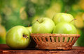 Juicy green apples in basket Royalty Free Stock Image