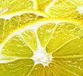 Juicy Lemon Slices Royalty Free Stock Image