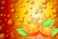 Juicy Orange Stock Photo