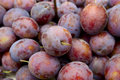 Juicy plums Royalty Free Stock Photo