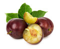Juicy plums isolated on the white background Royalty Free Stock Photo