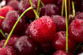 Juicy red cherry close up Royalty Free Stock Photo