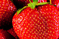 Juicy ripe strawberry closeup macro background Royalty Free Stock Image