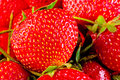 Juicy ripe strawberry closeup macro background Stock Photos