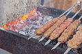 Juicy slices meat sauce prepare fire shish kebab Royalty Free Stock Images