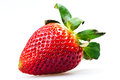 Juicy strawberries Royalty Free Stock Image