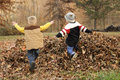 Jump into fall two little boys jumping in a pile of leaves Royalty Free Stock Photos