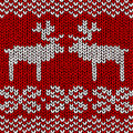 Jumper with reindeers Royalty Free Stock Photos