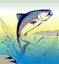 Jumping Fish Salmon - Illustration Royalty Free Stock Photo