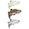 jumping salmon coho Royalty Free Stock Photo