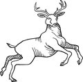 Jumping stag