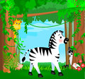 Jungle animal scene illustration with animals a zebra giraffe raccoon hedgehog and rabbit among the forest Stock Photo