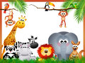 Jungle animals illustration of funny Stock Images