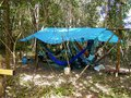 stock image of  Jungle Campsite under Rain Forest Canopy in the Amazon