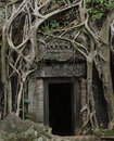 Jungle doorway Royalty Free Stock Photos