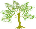 Jungle Fern tree plant Stock Image
