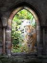 Jungle gateway Stock Photo