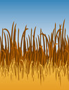 Jungle Grass Vector Illustration Royalty Free Stock Photos
