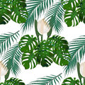 Jungle. Green tropical leaf, monster flowers and palm leaves. Seamless floral pattern. on white background