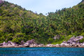 Jungle at ko tao thailand Stock Photos