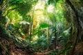 Jungle at krabi thailand deep green Stock Image