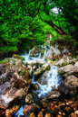 Jungle landscape with flowing turquoise water of georgian cascade waterfall at deep green forest. Mountain of georgia Royalty Free Stock Photo