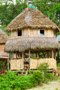 Jungle Lodge In Amazon Basin Ecuador Royalty Free Stock Photo