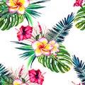 Jungle paradise pattern