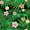 Jungle seamless pattern. Palm leaves and exotic flowers on a black background. Royalty Free Stock Photo