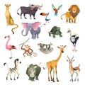 Jungle wild animals. Savannah forest animal bird safari nature africa tropical exotic forest marine mammals, cartoon set