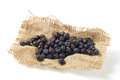 Juniper berries burlap isolated white Royalty Free Stock Photo