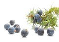 Juniper Berries Isolated On Wh...