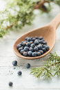 Juniper berries wooden spoon with Royalty Free Stock Images