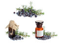 Juniper branch and berries with pharmaceutical bottles Stock Photos