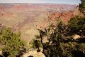 Juniper snag looking north over the grand canyon and colorado river at national park arizona Stock Photo