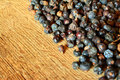 Juniper some berries on wood Royalty Free Stock Images