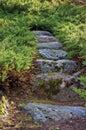 Junipers granite stone pathway rock stairway path Royalty Free Stock Photo