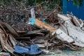 Junk site indicating disaster like tsunami, earthquake,tornado or typhoon Royalty Free Stock Photo